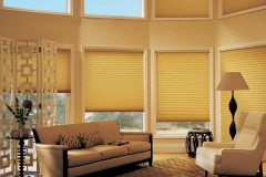hunter_douglas_duette